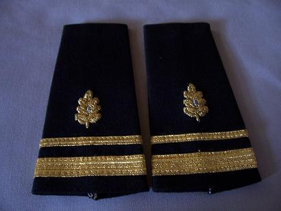 USN LTJG Medical Corps Epaulets
