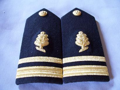 USN LTJG Medical Service Corps MALE Shoulder Boards