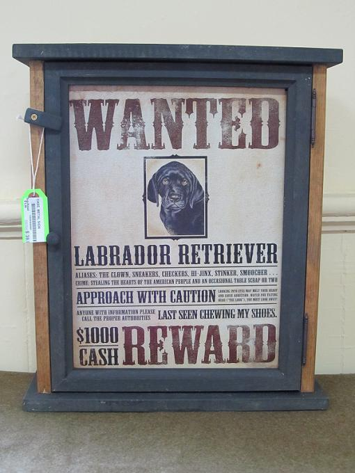 Wanted- Black Lab Pine Cabinet